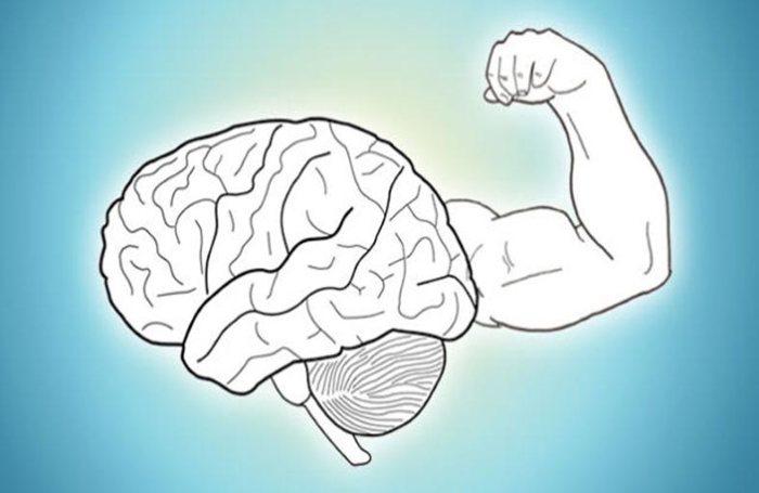 Как повысить работоспособность мозга?