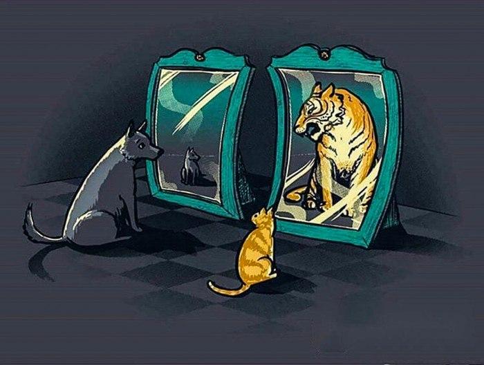 Самый вредный миф о самооценке