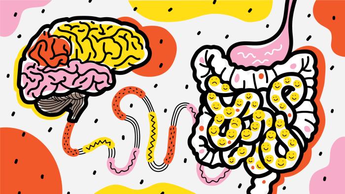 Как кишечные бактерии управляют нашим мозгом