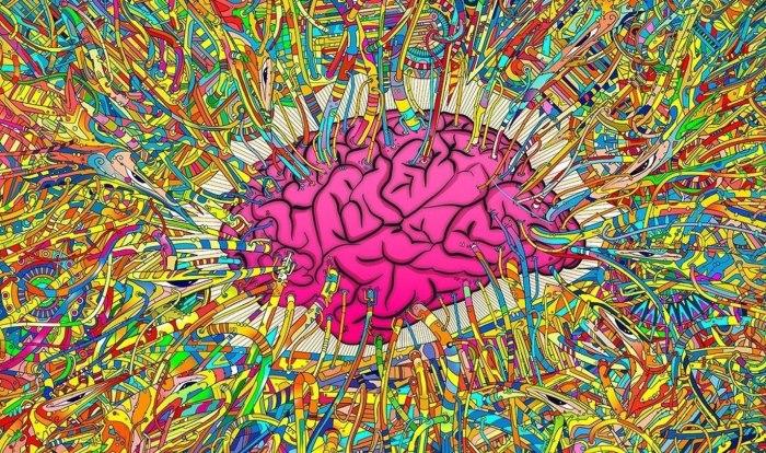 14 способов, которыми мозг обманывает вас, чтобы предотвратить перемены