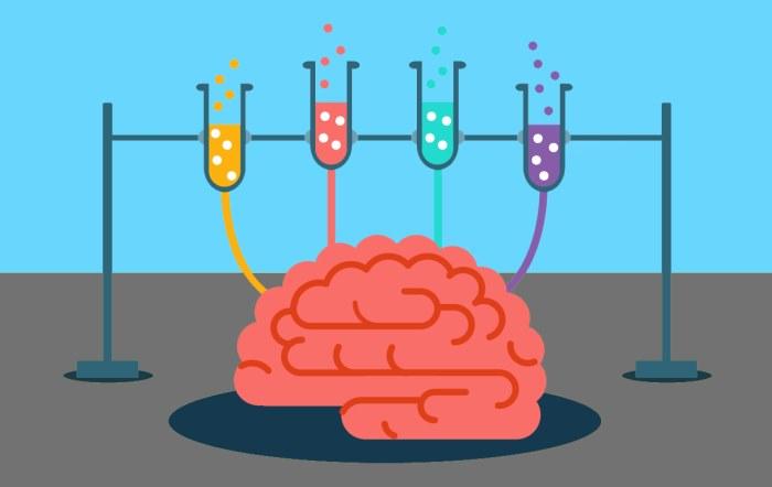 Не жмите на педальку или величайший дофаминовый обман мозга