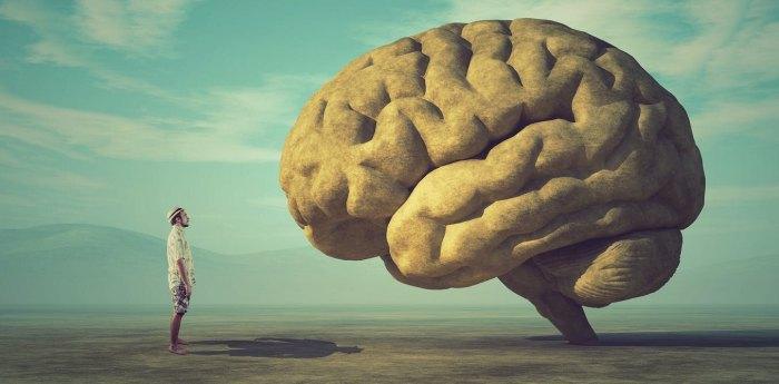 7 ошибок, которые ваш мозг делает ежедневно